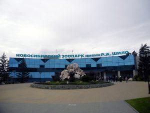 В Новосибирске собираются создать новую платную парковку