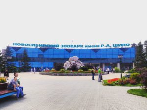 Возле новосибирского зоопарка откроется платная парковка