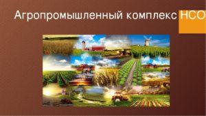 АПК Новосибирской области могут защитить от нововведений в налоговом законодательстве