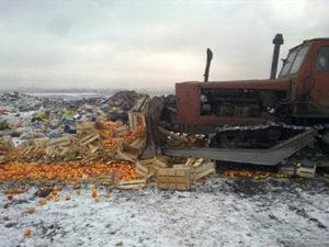 В Новосибирске раздавили санкционные яблоки