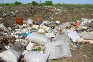 От Криводановского сельсовета требуют ликвидировать свалку