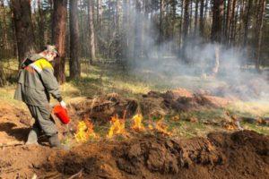 В нескольких районах Новосибирской области сохраняется высокая пожароопасность