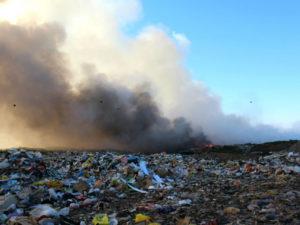 Жители Новосибирска обратились к президенту с жалобой на «Экологию-Новосибирск»