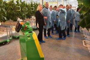 В Новосибирской области открылся новый тепличный комплекс