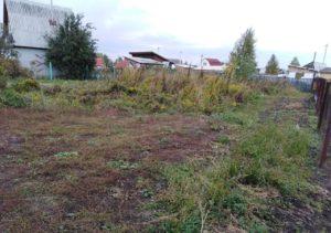 Бердские власти выкупят дачные участки под кладбище