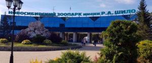 Областные власти выделили новосибирскому зоопарку дополнительные средства